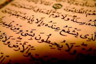 Darf man den Qur'an demokratisch verbieten lassen?